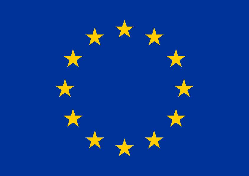 European Research Fellowship Programme